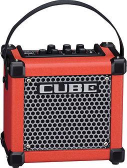 Roland Cube GX Ithaca Guitar Works.jpg