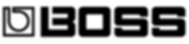 BOSS logo Ithaca Guitar Works.png