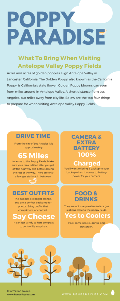 Infographic guide of top things to bring to California's Poppy Fields including a full tank of gas.