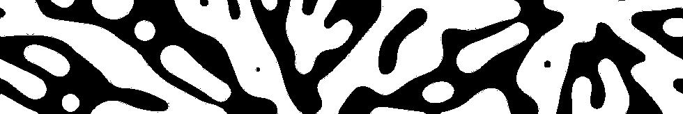Jihana B. White Banner Texture-02.png