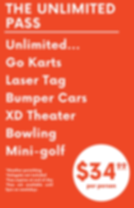 The Unlimited Pass 11x17 Canva 2019-12-1