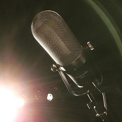 NoHype Audio LRM1 Ribbon mic