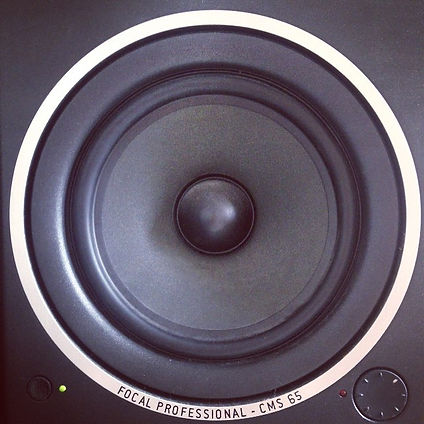 FOCAL CMS65 monitor #2