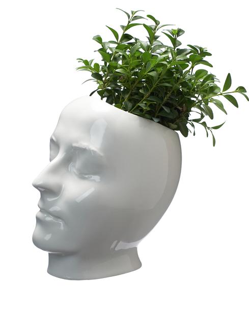 My face - Vase