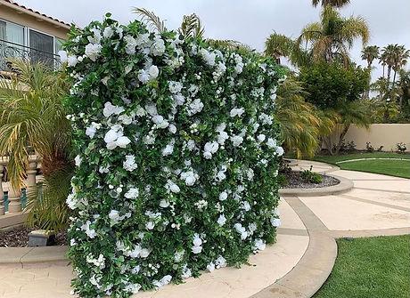 garden vibe.jpg
