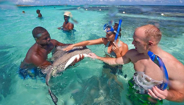 Stingray-City-couple-petting-ray-e154593
