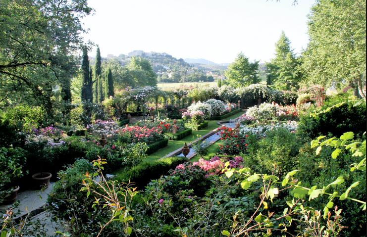 roseraie/rose garden