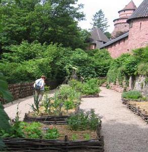 alsace-jardin-Koenigsbourg.jpg