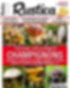 rustica champignons alma mundi