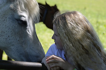 parler-a-l-oreille-des-chevaux-voyage-al
