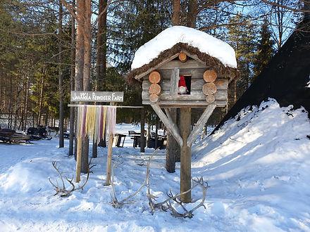 laponie finlandaise famille images doc bayard luosto