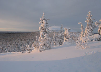 paysage-laponie-finlandaise-voyage-alma-
