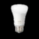 hue bulb.png