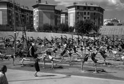 Gym : journée de l'école laïque