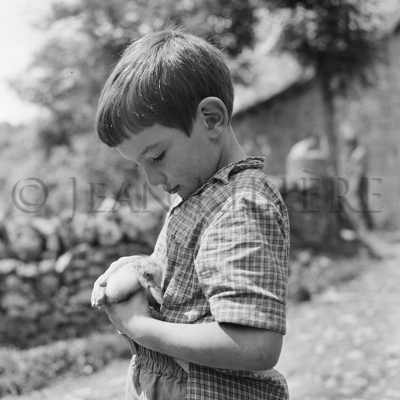 Le petit garçon et son caneton