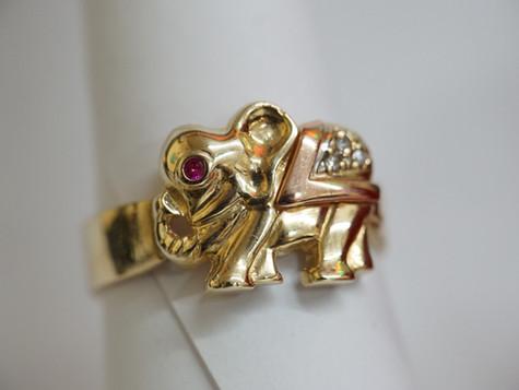 Tri-Color Elephant Ring