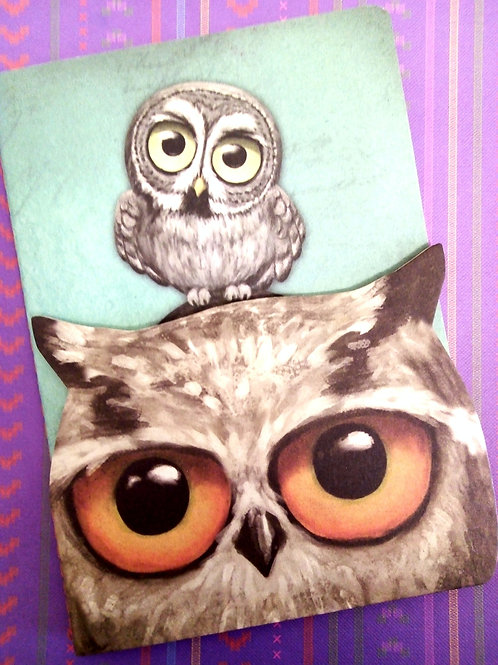 Book Owl Two pack of Notebooks, Stocking Filler