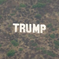 A Trump sign on the hillside along the 405 Freeway near the Sepulveda Pass.