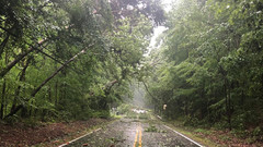 TRACKING ISAIAS: Storm ravages Southern Maryland, Eastern Shore (VIDEOS AND PHOTOS)