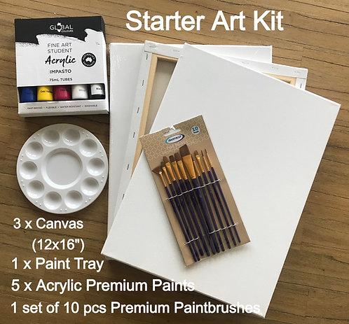 "Starter Art Kit with 3 x Canvas(12x16"")"
