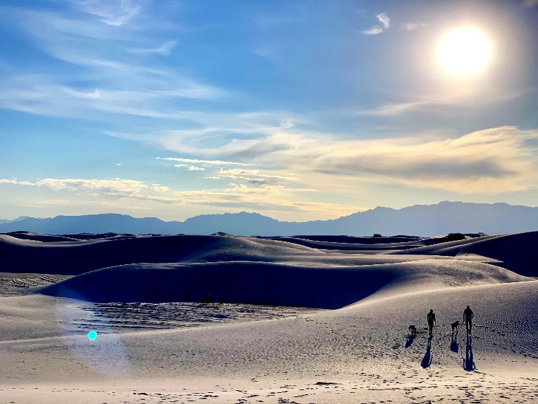 White Sands National Monument - Couple Walking Dogs