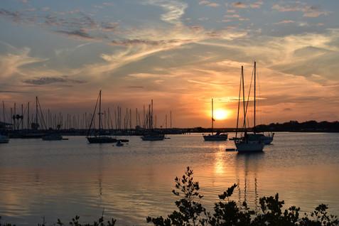 tampa-dog-beach-sailboats-sunset.JPG