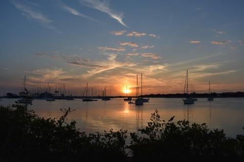 tampa-dog-park-sailboats-sky-sunset.JPG