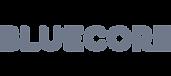 partner-bluecore.png