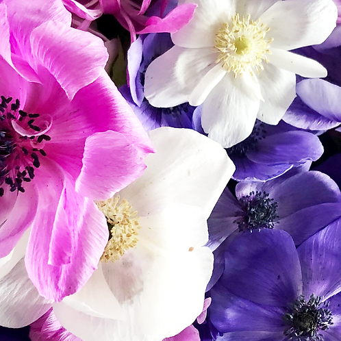 2021 Spring Flower Share CSA