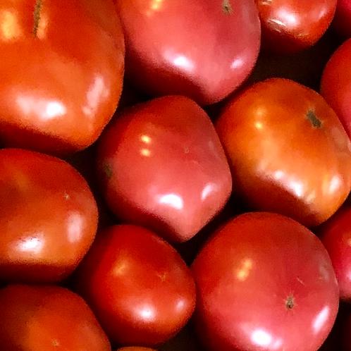2021 Fall Vegetable Share CSA - Full Share