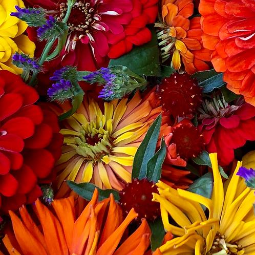 2021 Fall Flower Share CSA