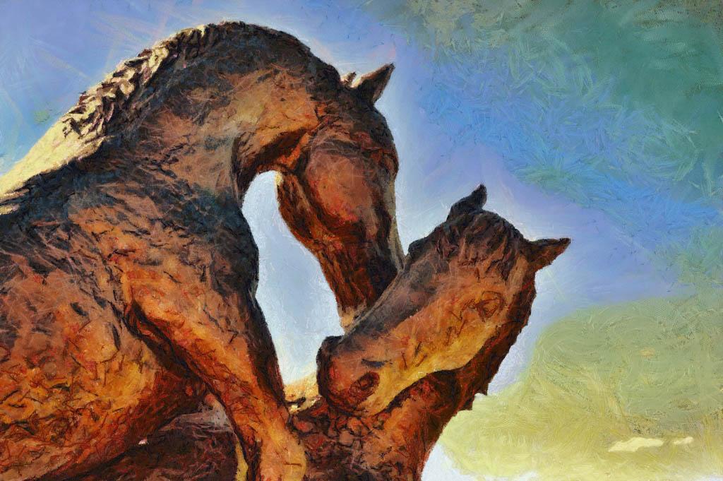 Horses Frollick
