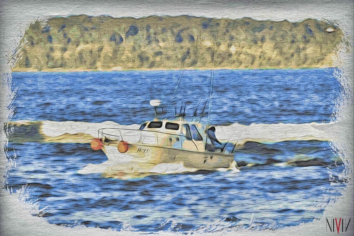Boat Postcard