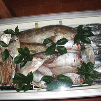 Daily fresh fish