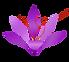 Safran House Logo_Small.png