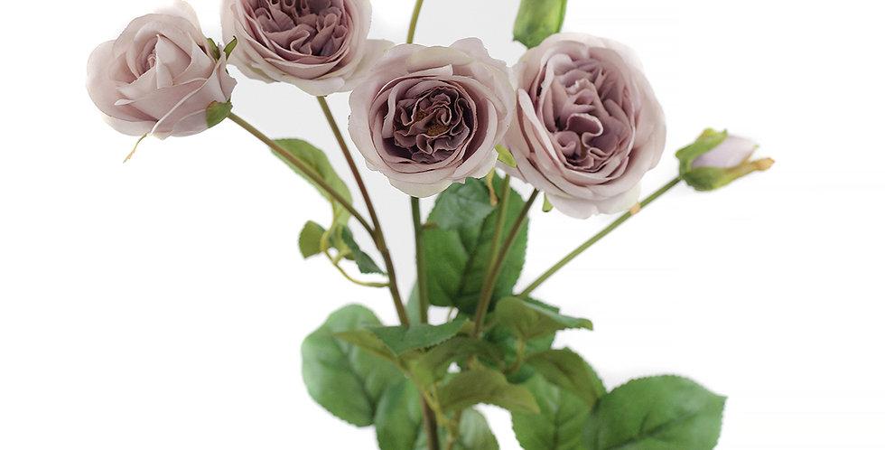 Винтажная роза