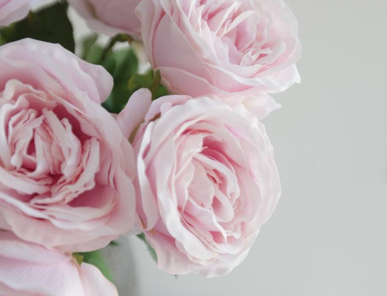 Роза Остин