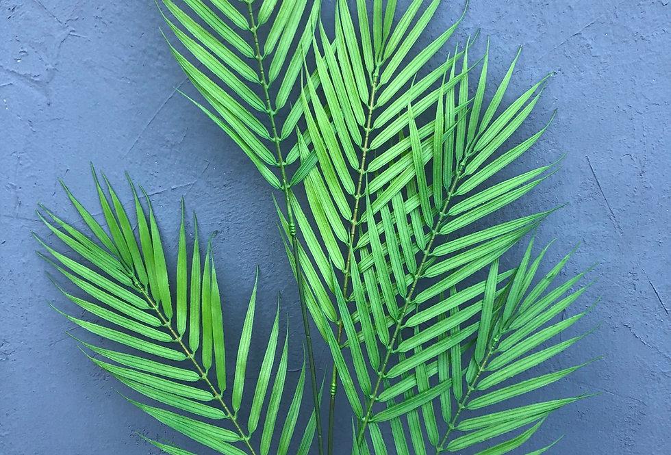 Ветка пальмы 5 соцветий