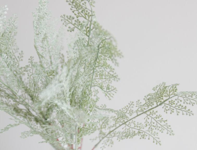 Ветка зелени состаренная