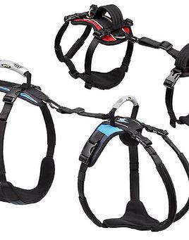 harnesses-900.jpg