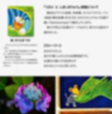 スクリーンショット 2019-07-01 14.21.24.png