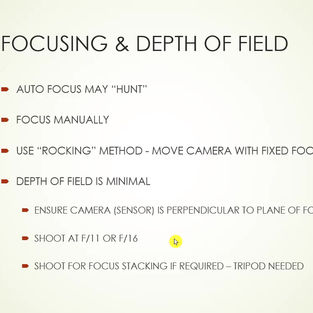 Focus Systems and Macro.mp4