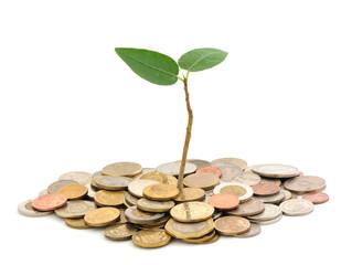 Fund Raising? Pipeline or Pipe Dream?