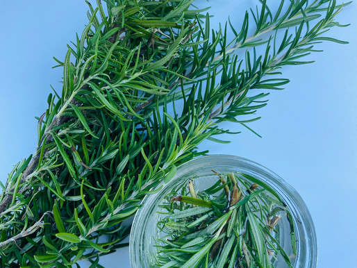 All You Need to Know About Rosemary