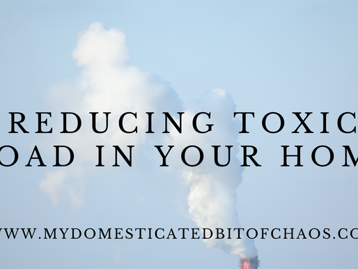Reducing Toxic Load In Your Home