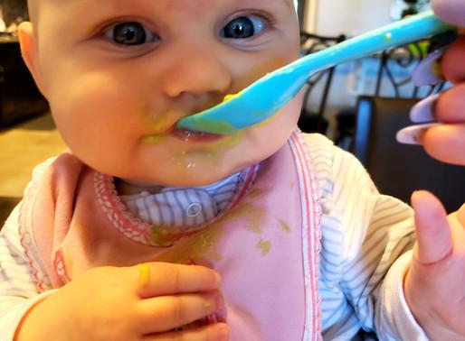 Avocado Baby Food