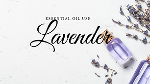 Uses for Lavender Essential Oils