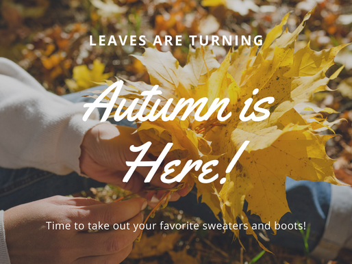 Autumn Is Here! Affordable Amazon Fashion Finds