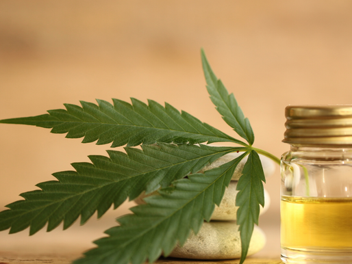 CBD-  The What, The Why, and The How