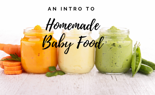 Introduction to Making Your Own Baby Food